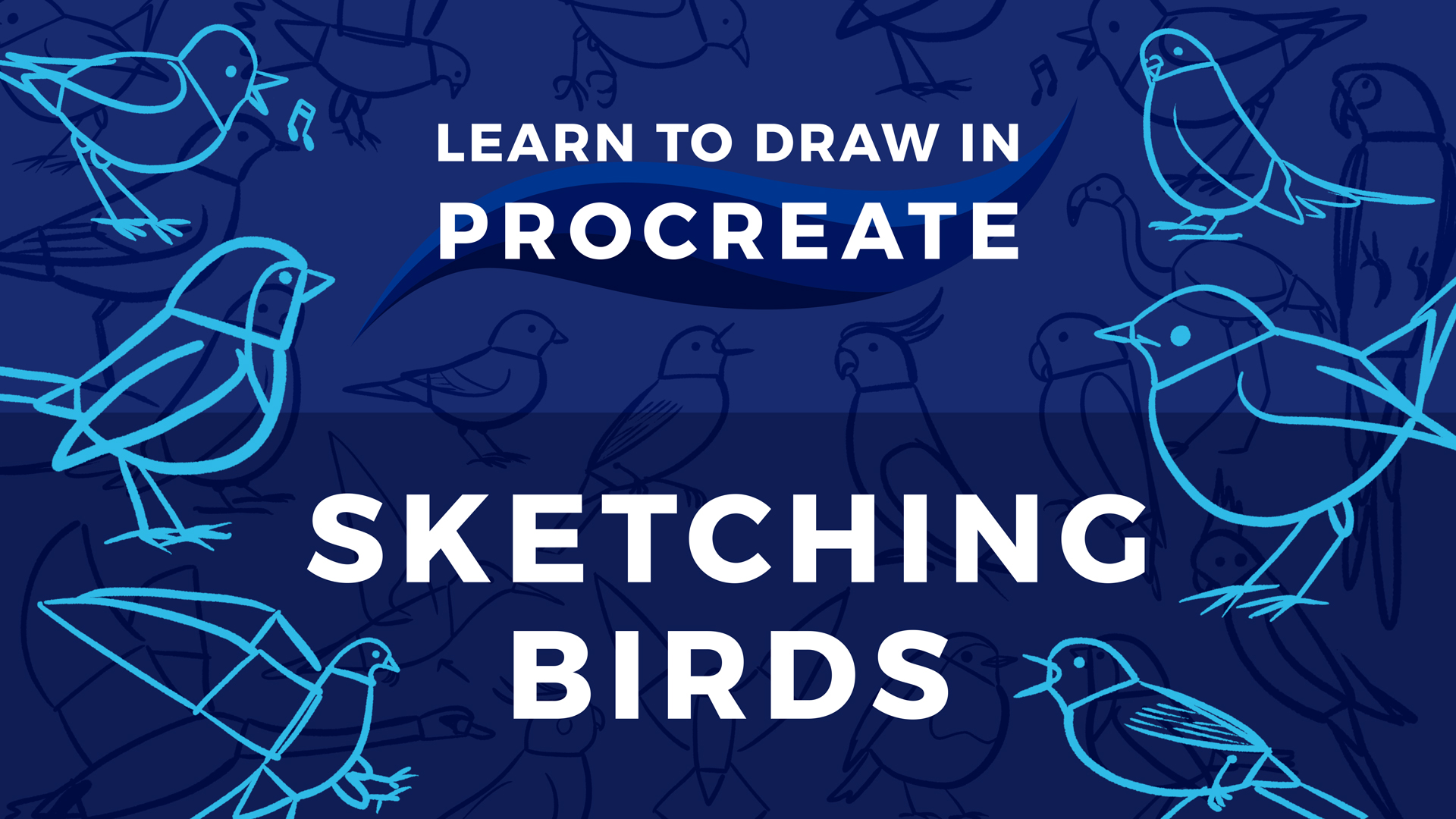 Learn to Draw in Procreate // Sketching Birds • Bardot Brush
