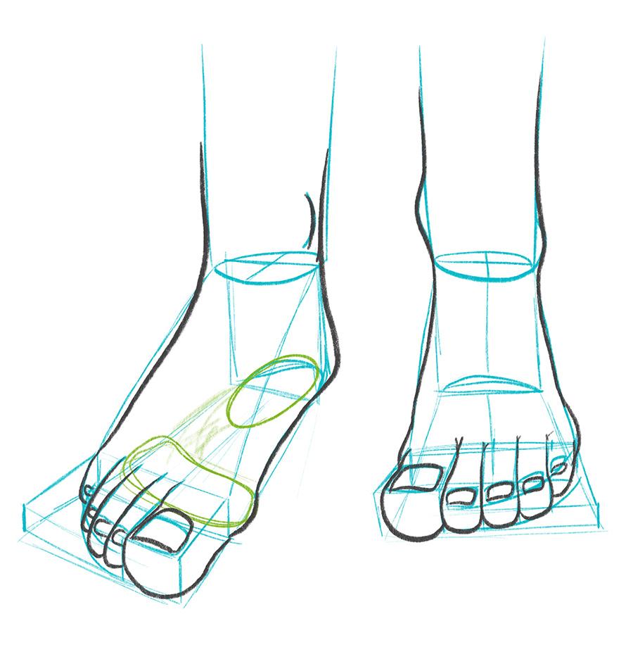 Day 19 How To Draw Feet Bardot Brush