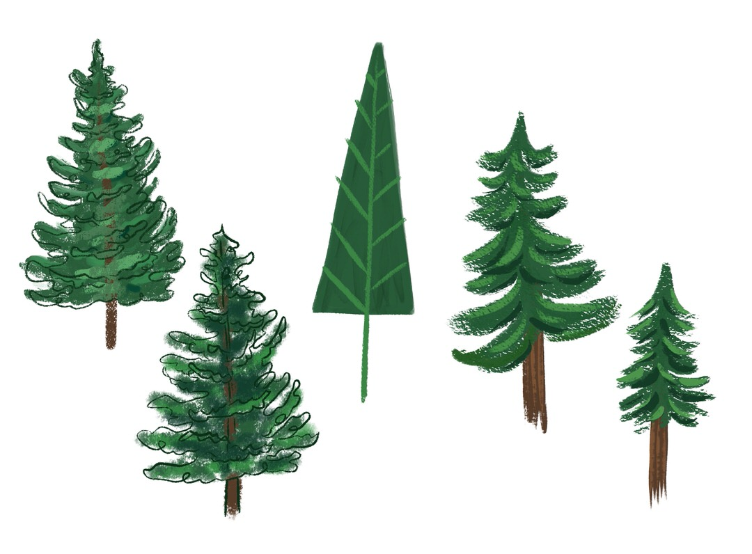Stylizing my sketches more at testing out colors and brushes. I like the style of the two trees on the right.