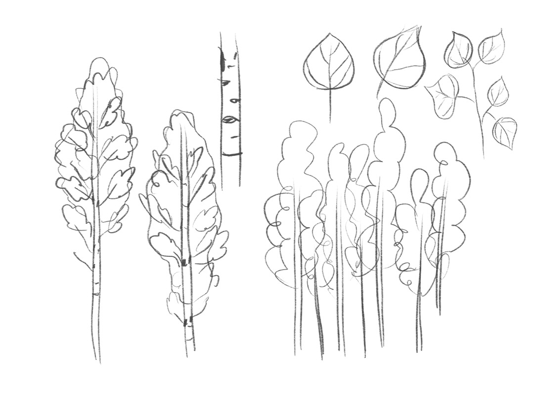 These are the sketches I made from observation for Aspen Trees