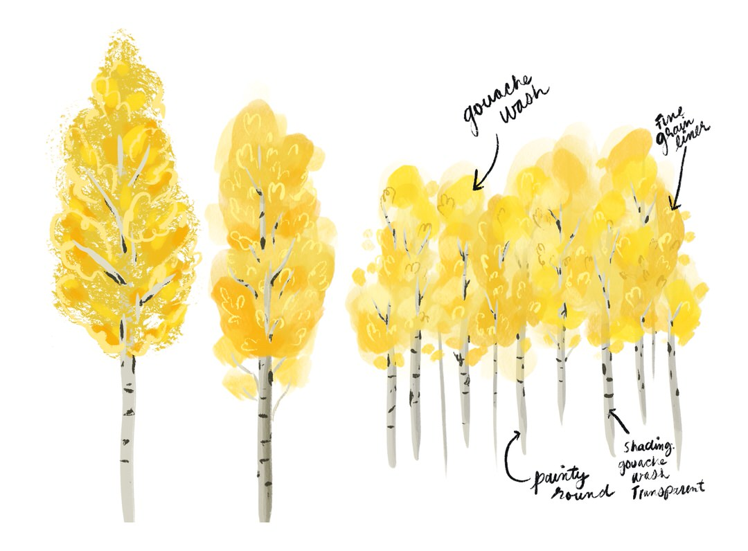 After completing the tree studies, I'm most excited about these fall-time Aspen