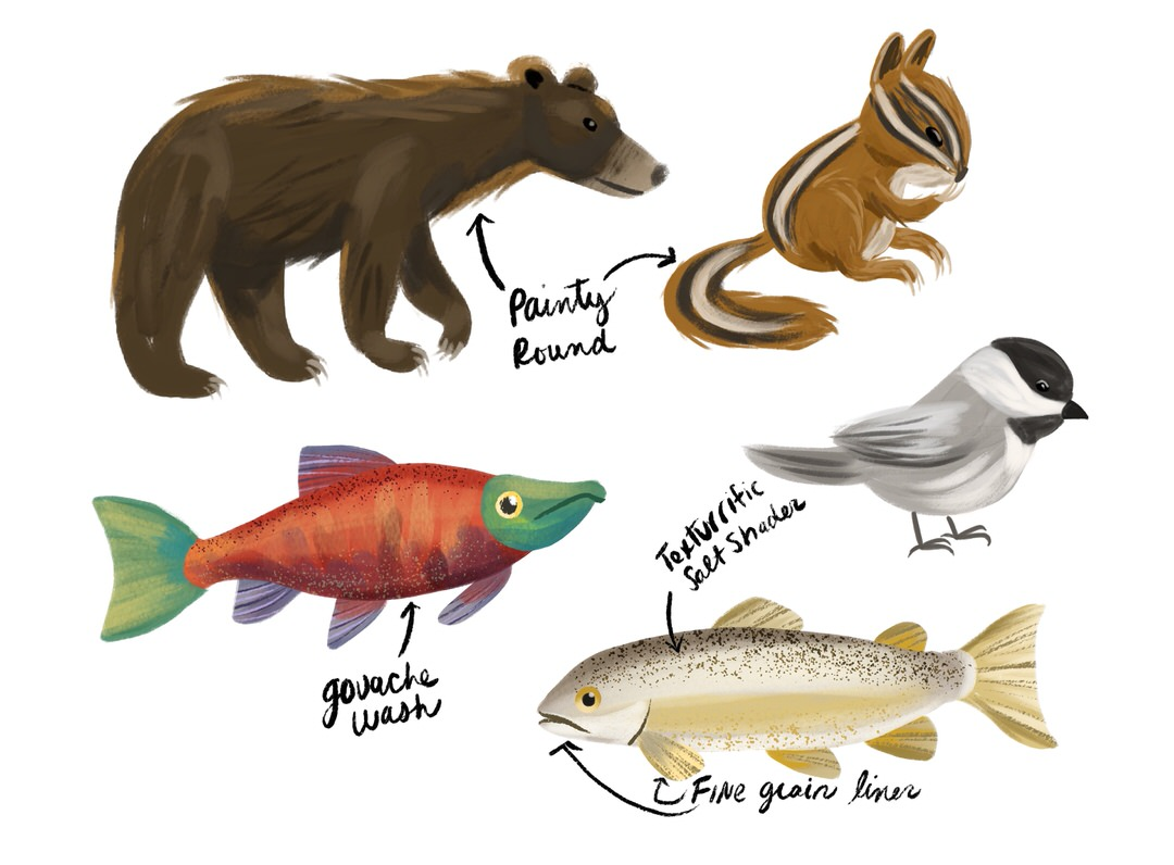 My animals studies for Lake Tahoe wildlife