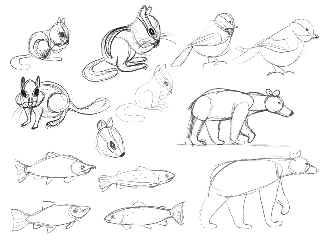Next, I made sketches of each animals before determining what brushes and colors I want to use