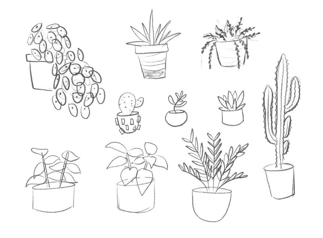 Plant-y sketches!