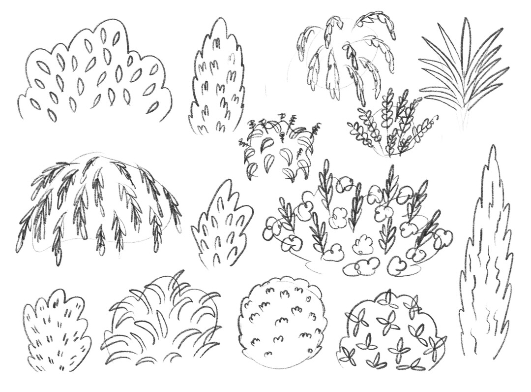 Sketch page of shrubs for outside