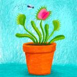 Week 18 // Unusual Plants // Making Art Everyday – Year Three