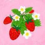 Week 15 // Plants through the Seasons // Making Art Everyday – Year Three